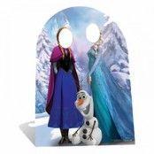 Frozen / Frost Stand-In Kartongvägg